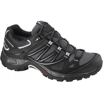 Produkt Salomon Ellipse GTX® W 308936