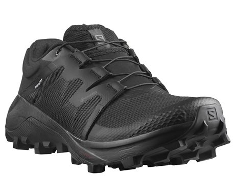 Salomon Wildcross GTX W 411215