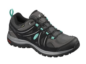 Produkt Salomon Ellipse 2 GTX W 404718