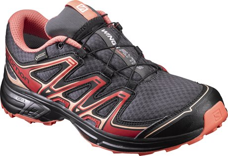 Salomon Wings Flyte 2 GTX W 392491