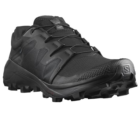 Salomon Wildcross GTX 410530