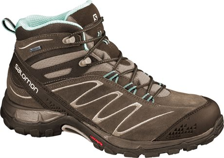 Salomon Ellipse MID LTR GTX® W 366817