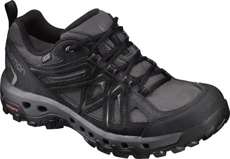 Salomon Evasion 2 GTX Surround 393667