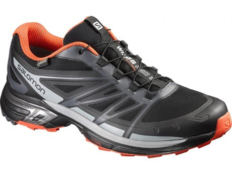 Salomon Wings Pro 2 GTX 390300