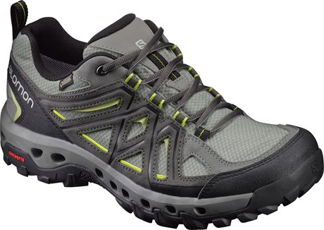 Salomon Evasion 2 GTX Surround 393669